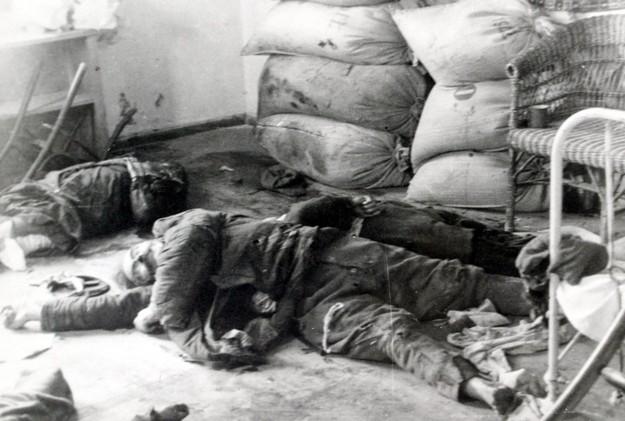 Ofiary mordu w Maciejowie luty 1944 r./Archiwa IPN /reprodukcja: Maciej Kaczanowski /Reporter